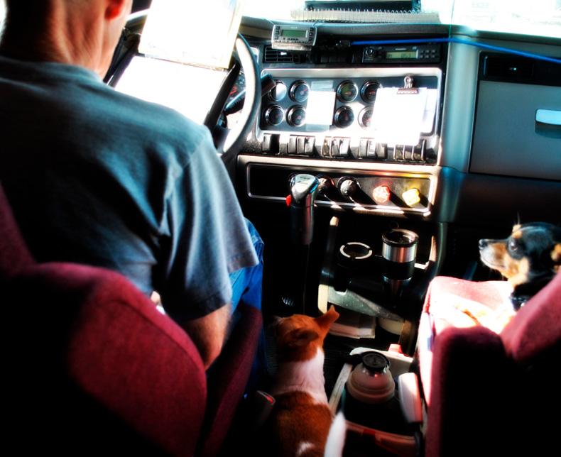 chauffør job med b kørekort